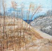 29 - Winter Dunes